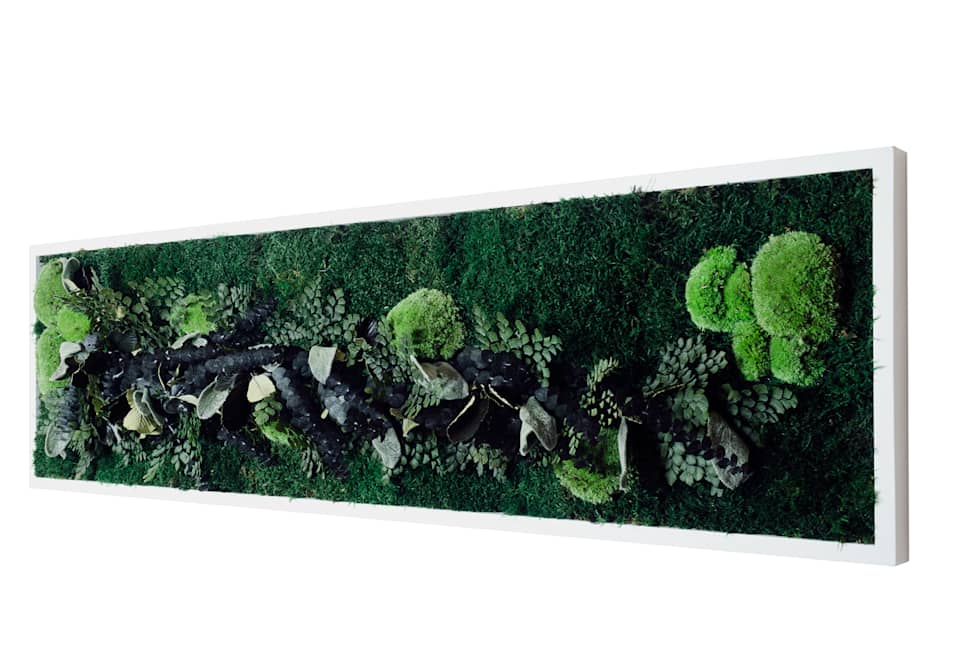 Jungle Moss green frames - stabilized moss from Moss Trend :  Hotels by Moss Trend