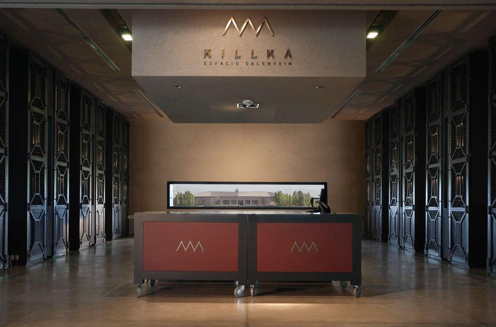 Merchandising: Centros de exposiciones de estilo  por Bórmida & Yanzón arquitectos