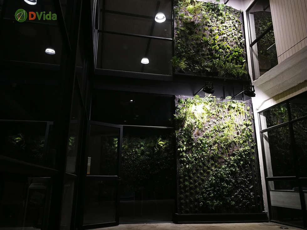 Muros verdes patio interior: Estudios y biblioteca de estilo  por DVida Jardines verticales