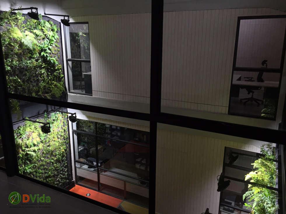Muros verdes en patio interior DVida: Estudios y biblioteca de estilo  por DVida Jardines verticales