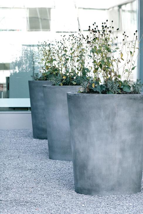 Concrete Rudolph GmbH Balconies, verandas & terraces Plants & flowers