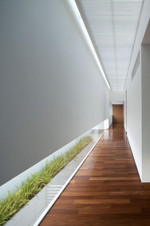 Hernandez Silva Arquitectos Pasillos, vestíbulos y escaleras modernos