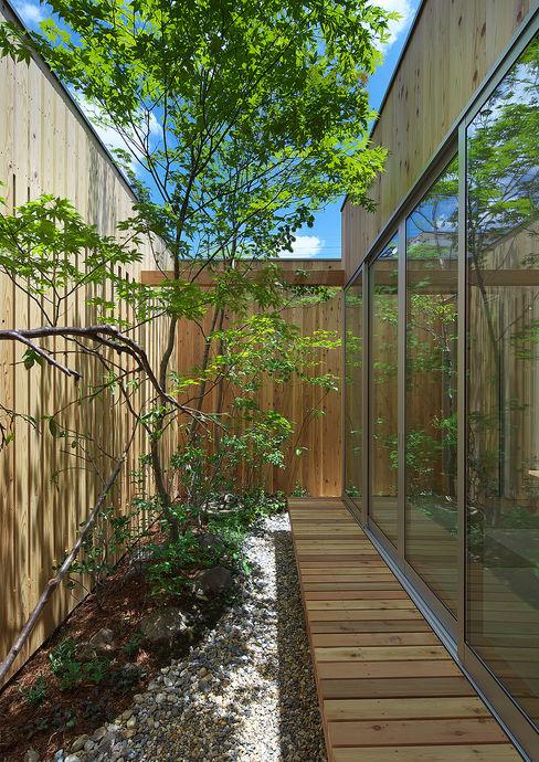 House of Nishimikuni arbol Modern Garden