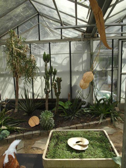 Installations de graines géantes Artgraine Jardin d'hiver original