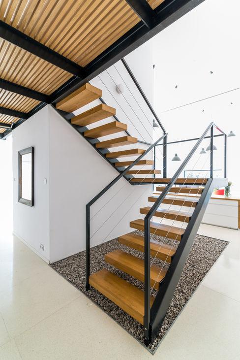 KROPKA STUDIO'S PROJECT Kropka Studio 現代風玄關、走廊與階梯