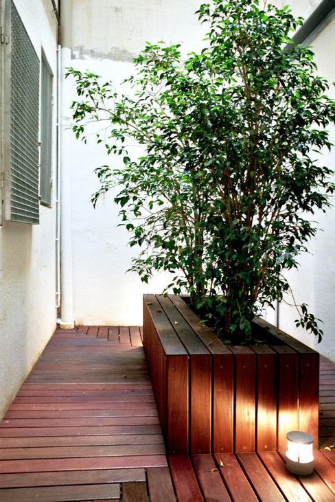 patio habitaciones Miel Arquitectos Jardines de estilo moderno