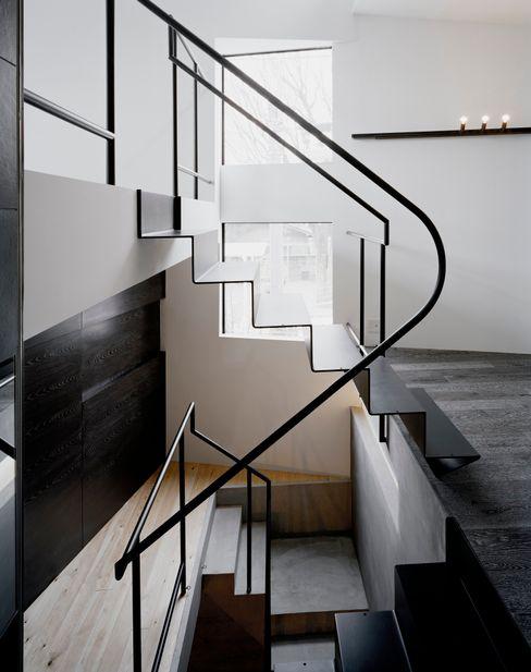 balena 筒井紀博空間工房/KIHAKU tsutsui TOPOS studio オリジナルスタイルの 玄関&廊下&階段
