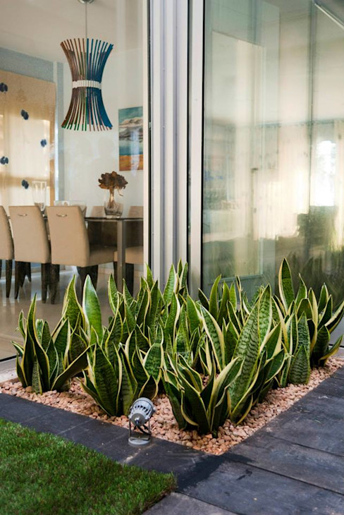 David Jiménez. Arquitectura y paisaje Asian style garden