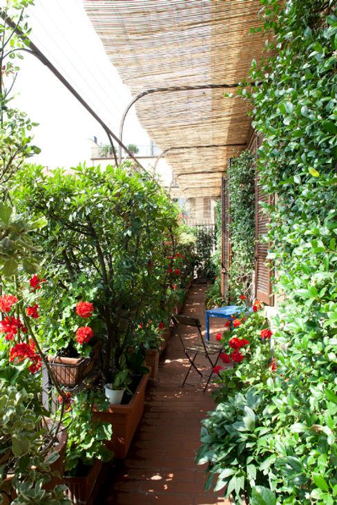 Balcone /terrazzo HBstudio Balcone, Veranda & TerrazzoPiante & Fiori