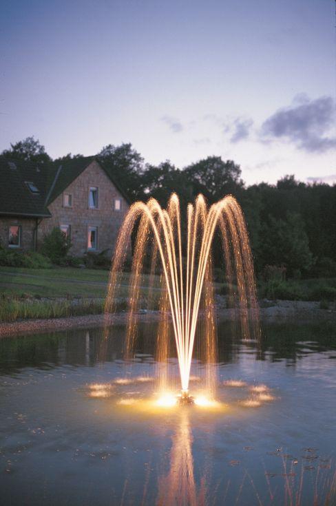 Decorative Dancing Floating Fountain Water Garden Ltd Classic style garden