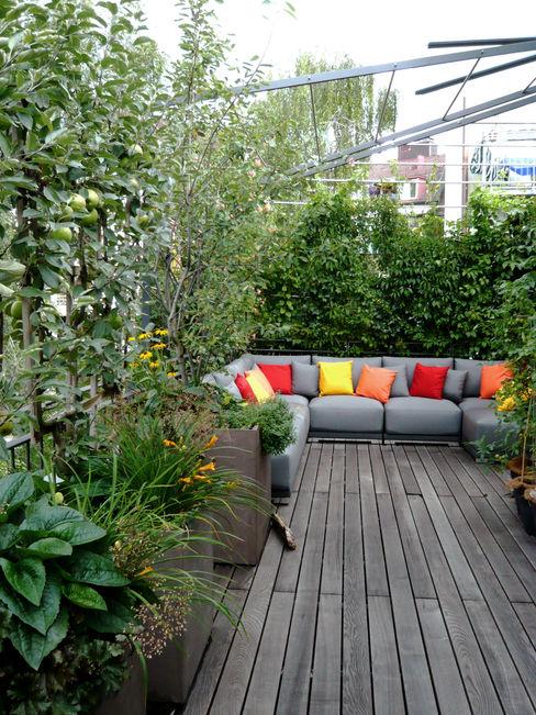 Dachterrassen- Gestaltung München-Au Blumen & Gärten Moderner Garten
