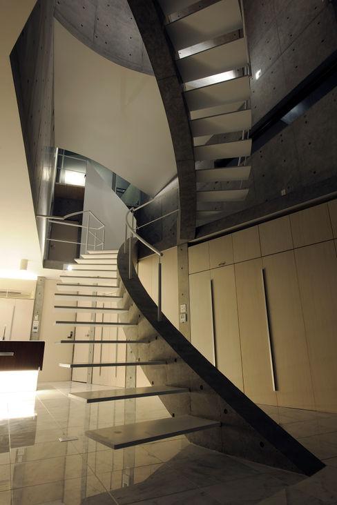 T House Atelier Boronski 現代風玄關、走廊與階梯