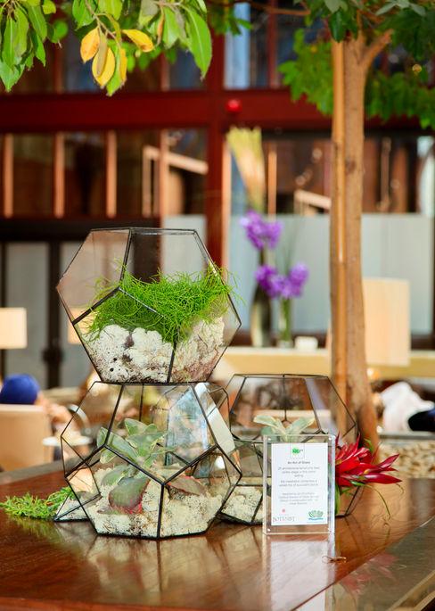 Bespoke Aztec Terrarium Installation The Urban Botanist Modern exhibition centres