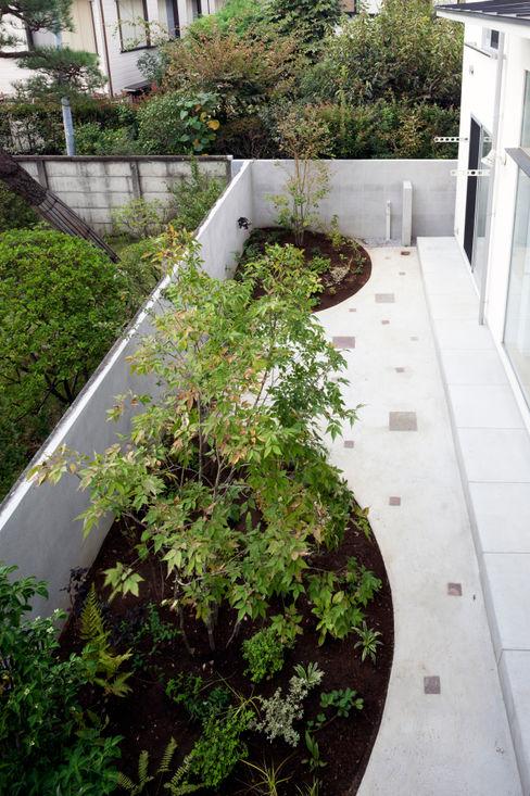 GARDEN from uppper level FURUKAWA DESIGN OFFICE Jardines de estilo moderno