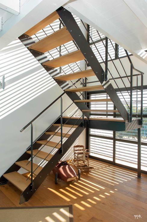 POUGET Agnès Corridor, hallway & stairsStairs