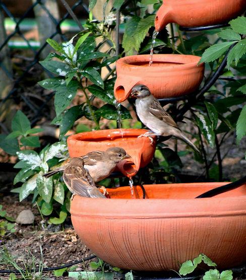 Bahçe Şelalesi homify BahçeAksesuarlar & Dekorasyon