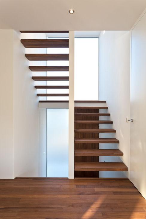 m67 architekten Nowoczesny korytarz, przedpokój i schody
