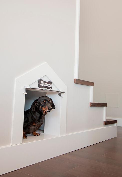 Escaleras con hueco para caseta de perro Canexel Pasillos, vestíbulos y escaleras modernos