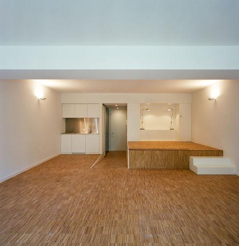 Atelier d'architecture Pierre Hebbelinck et Pierre de Wit Modern Houses