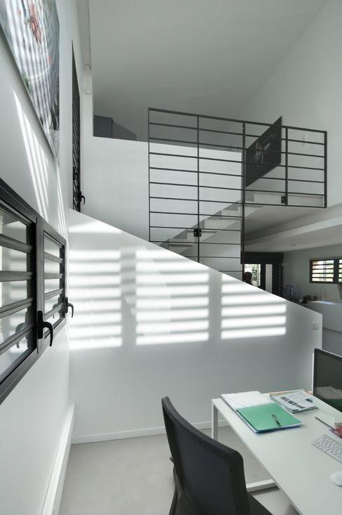 LITTORAL IMMOBILIER T&T architecture Espaces de bureaux tropicaux