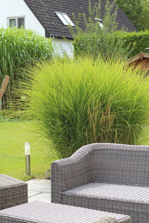grasgrau - GARTENDESIGN Modern Garden