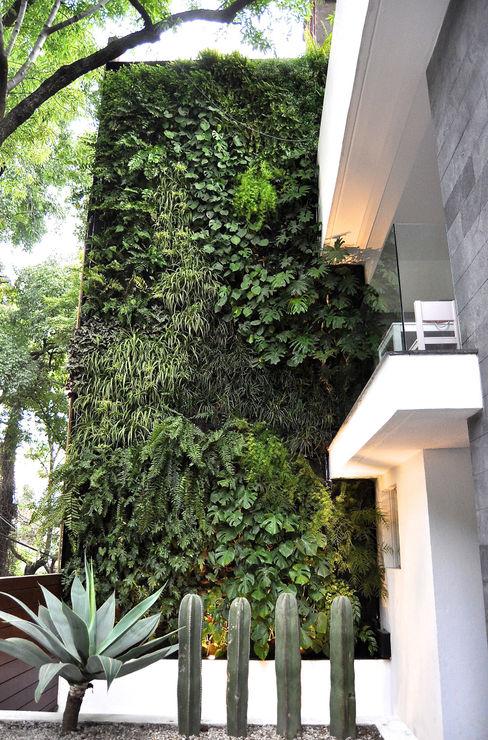 DF ARQUITECTOS Moderner Balkon, Veranda & Terrasse