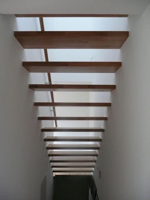 Haus S waldorfplan architekten Moderner Flur, Diele & Treppenhaus