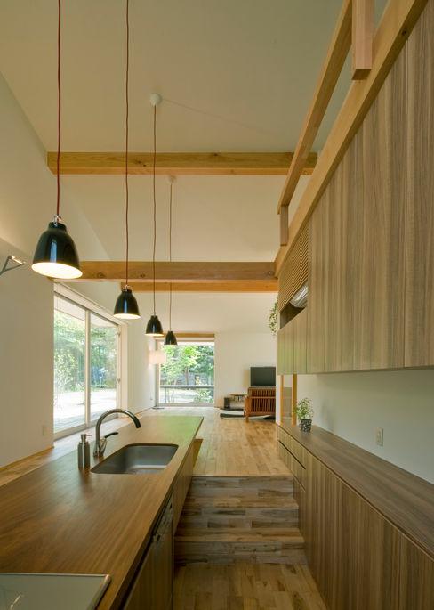 IBC DESIGN Modern style kitchen