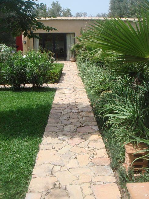 Path leading to office. JULIAN HUNTER ARCHITECTS Jardin moderne