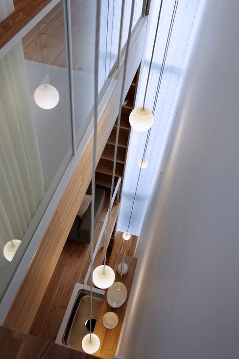 シナの木と白い家 高橋真紀建築設計事務所 オリジナルな 窓&ドア