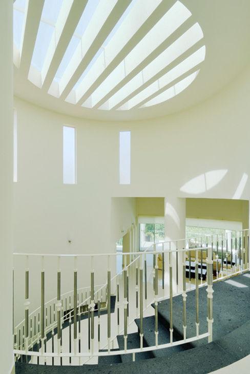 DOBLE ALTURA Excelencia en Diseño Pasillos, vestíbulos y escaleras modernos