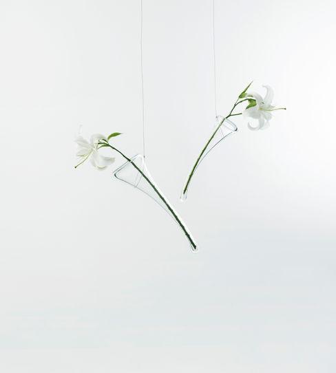 ilio HaushaltPflanzen und Zubehör Glas Transparent