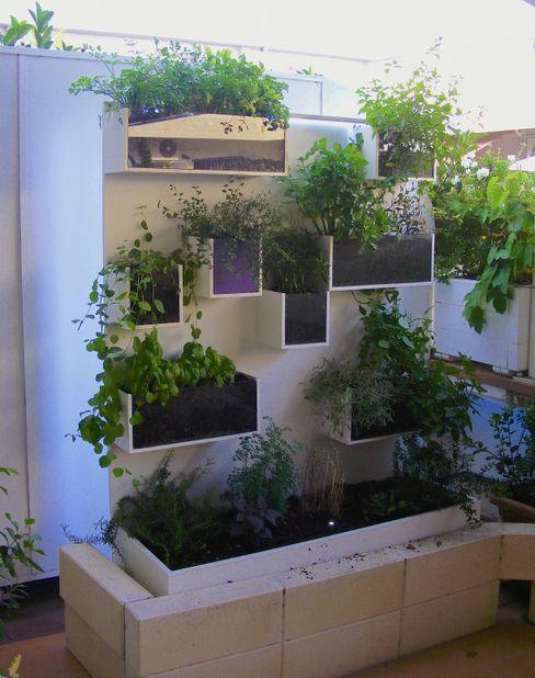 Parete per aromi. Tommaso Magaldi garden design Balcone, Veranda & Terrazza in stile moderno Ferro / Acciaio Bianco