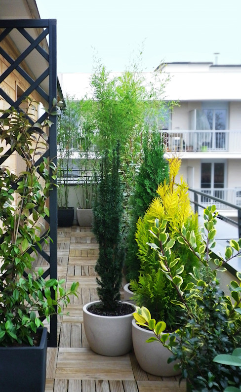 Barrière végétale Skéa Designer Jardin minimaliste Bambou Vert