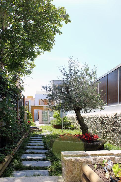 HOUSE NM_PÓVOA DE VARZIM_2015 PFS-arquitectura Jardins minimalistas