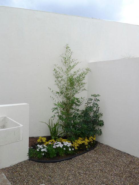 homify Vườn phong cách hiện đại