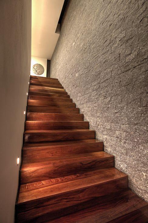 ze arquitectura Modern Corridor, Hallway and Staircase