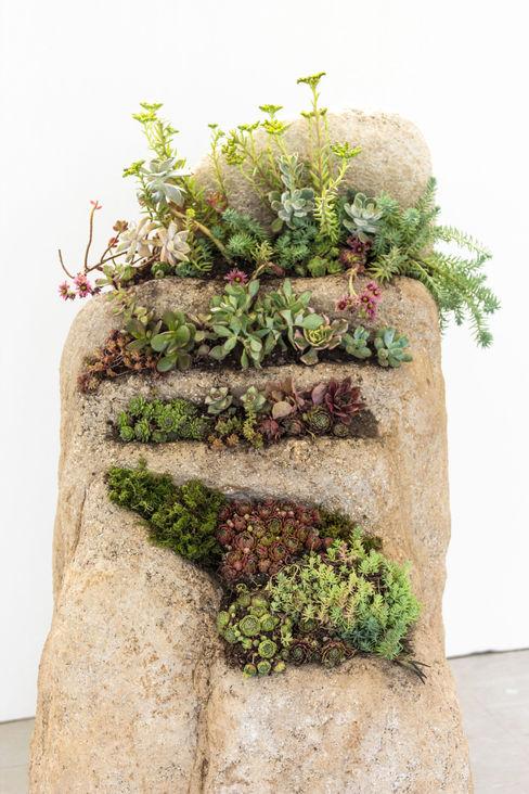 Julie Martin Garden Plant pots & vases