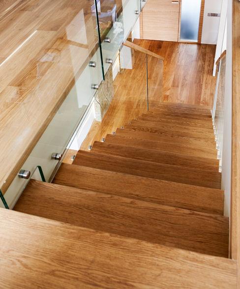 Trąbczyński Modern Corridor, Hallway and Staircase Wood