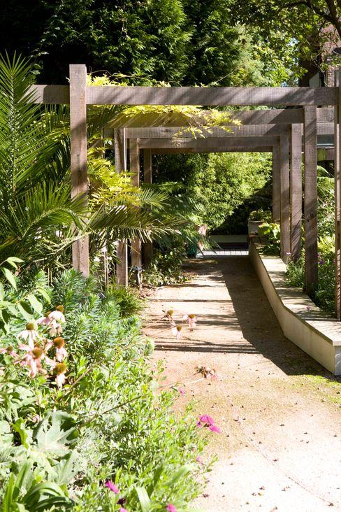 KSR Architects   Compton Avenue   Garden path KSR Architects Jardin moderne