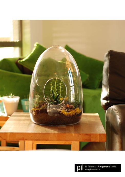 Terrarium Pil Tasarım Mimarlik + Peyzaj Mimarligi + Ic Mimarlik TuinPlanten & bloemen Glas Groen