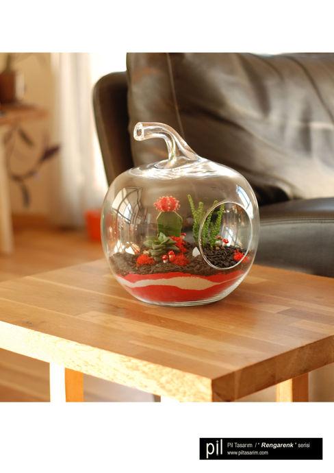 Terrarium Pil Tasarım Mimarlik + Peyzaj Mimarligi + Ic Mimarlik Nursery/kid's roomAccessories & decoration زجاج Pink