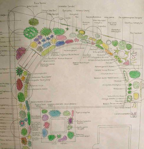 Planting design Jane Harries Garden Designs