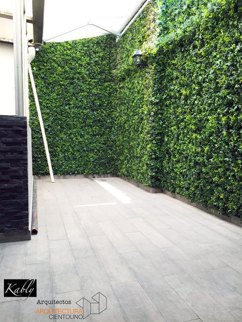 Arquitectura101 + Kably Arquitectos Minimalist style garden
