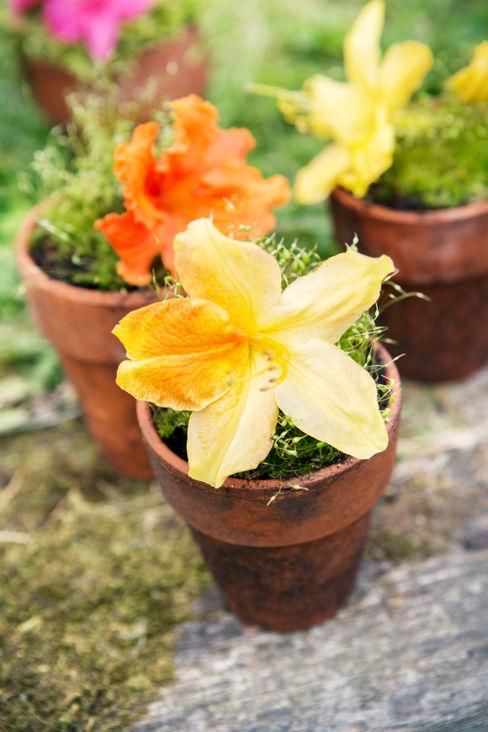 Pflanzenfreude.de Jardines de estilo clásico