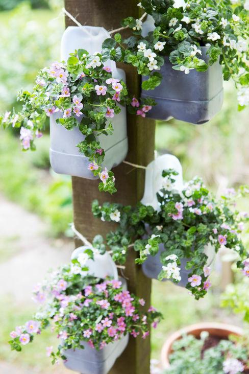 Pflanzenfreude.de Jardin classique