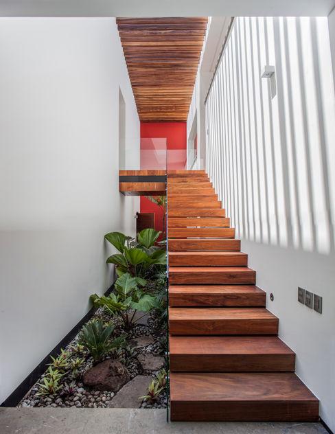 Casa de los 5 Patios Almazan y Arquitectos Asociados Jardines de estilo ecléctico Hormigón Blanco
