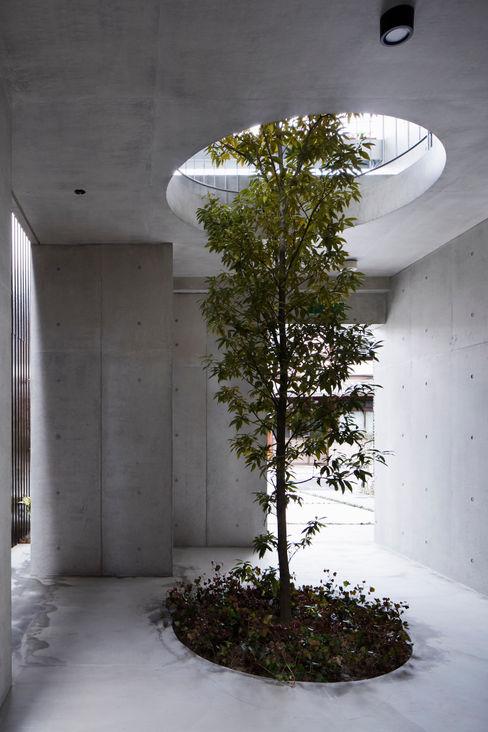 株式会社 藤本高志建築設計事務所 庭院 水泥 Green