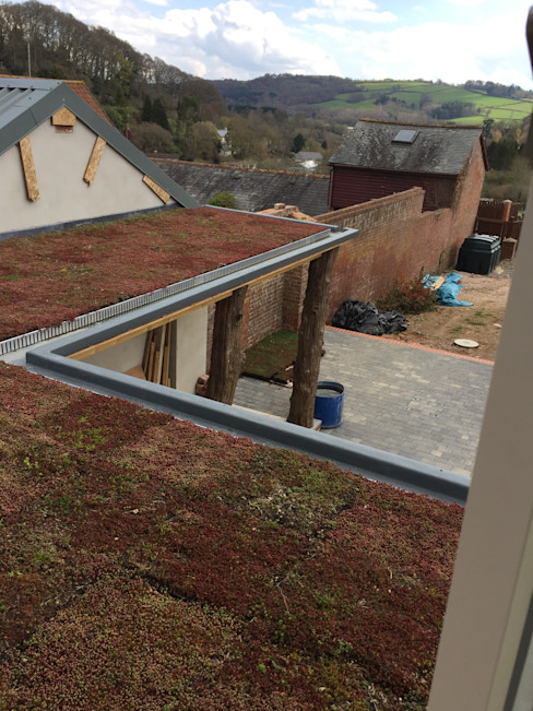 Flat Roof - Moss Building With Frames Minimalist house Wood