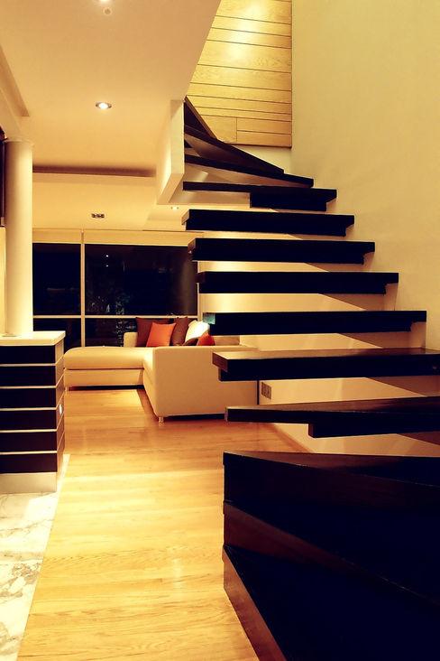 RIMA Arquitectura Modern corridor, hallway & stairs Wood